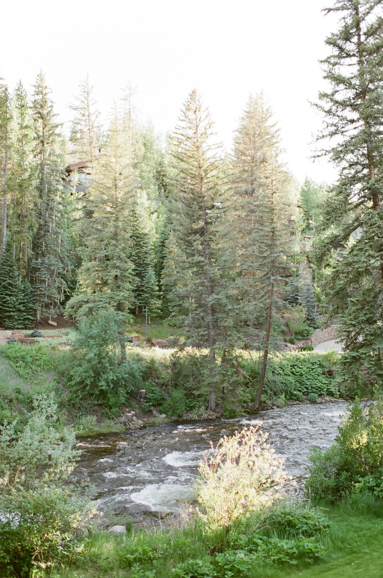 View of Gore Creek and pine trees