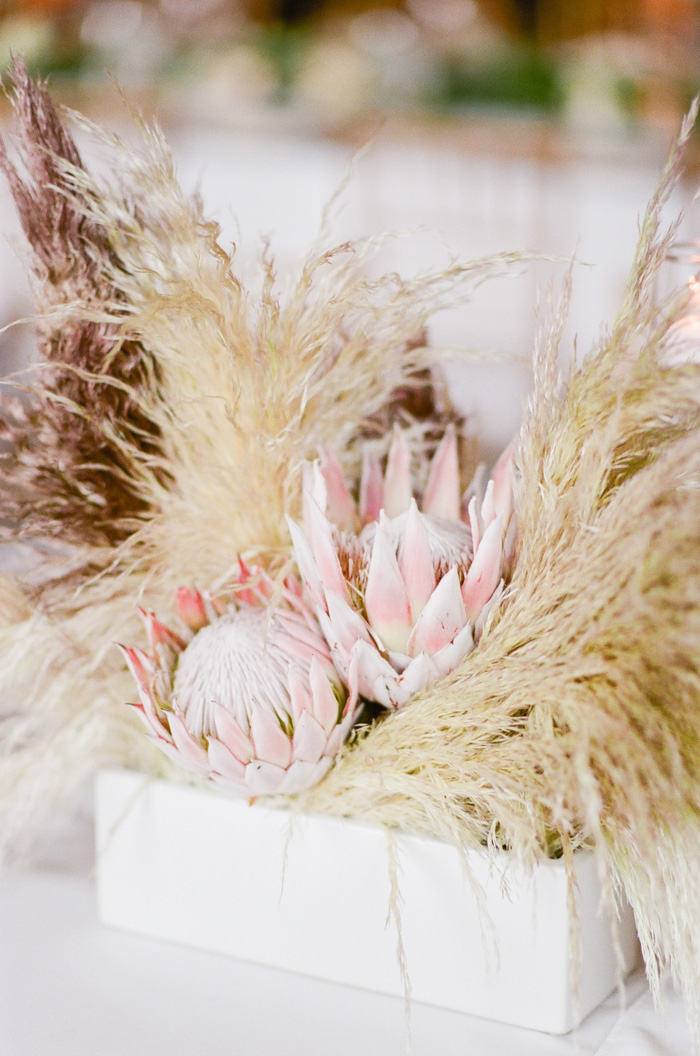 Feathergrass and protea arrangements at a wedding reception in Beaver Creek