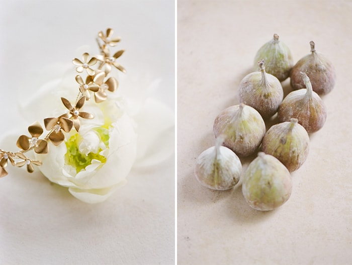 Styled shoot collage of flower and plant bulbs