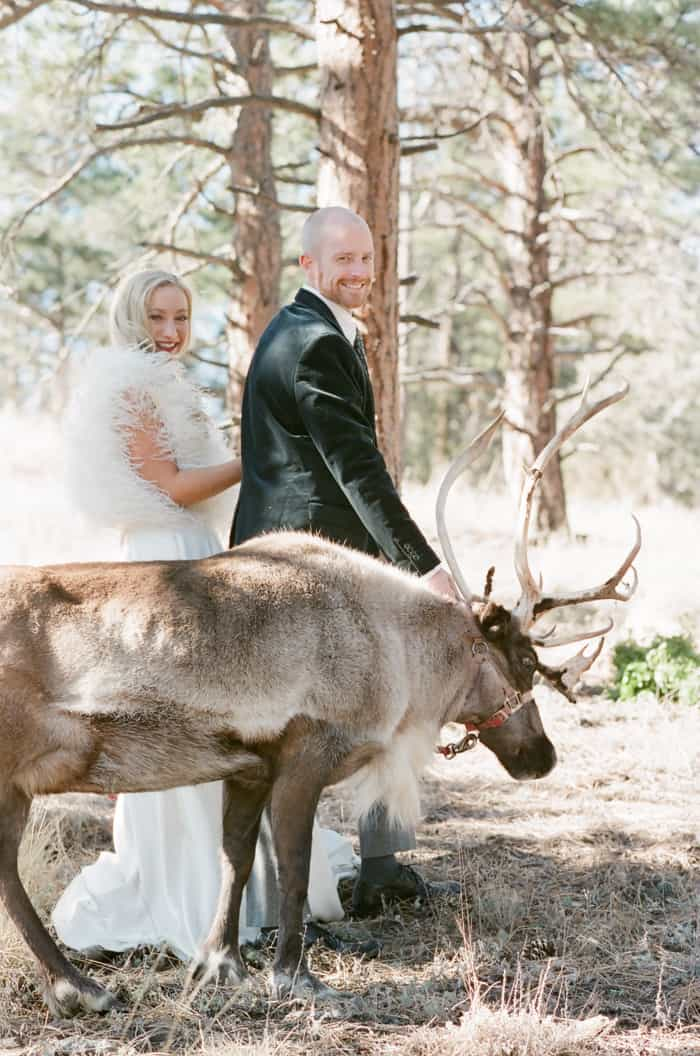 Engaged Couple With Reindeer At Their Vail Winter Engagement with Milk Glass Productions