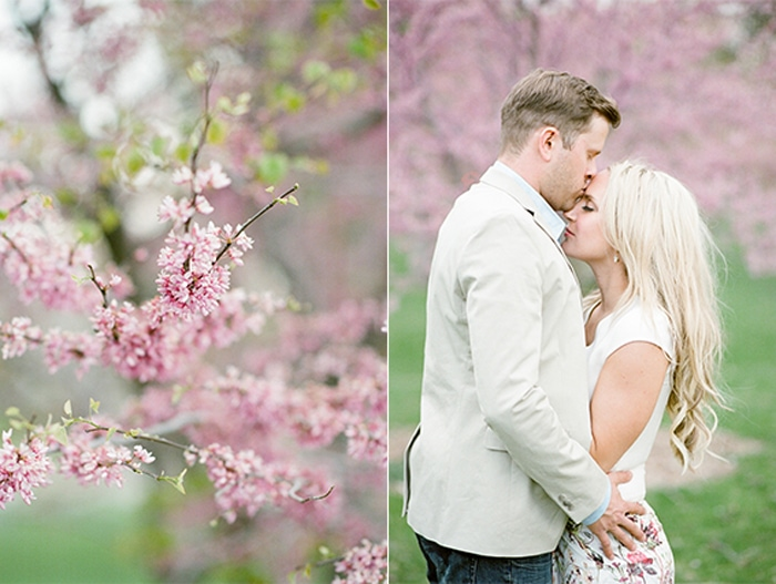 Man kisses his fiance on the forehead in front of cherry blossoms in Denver Colorado