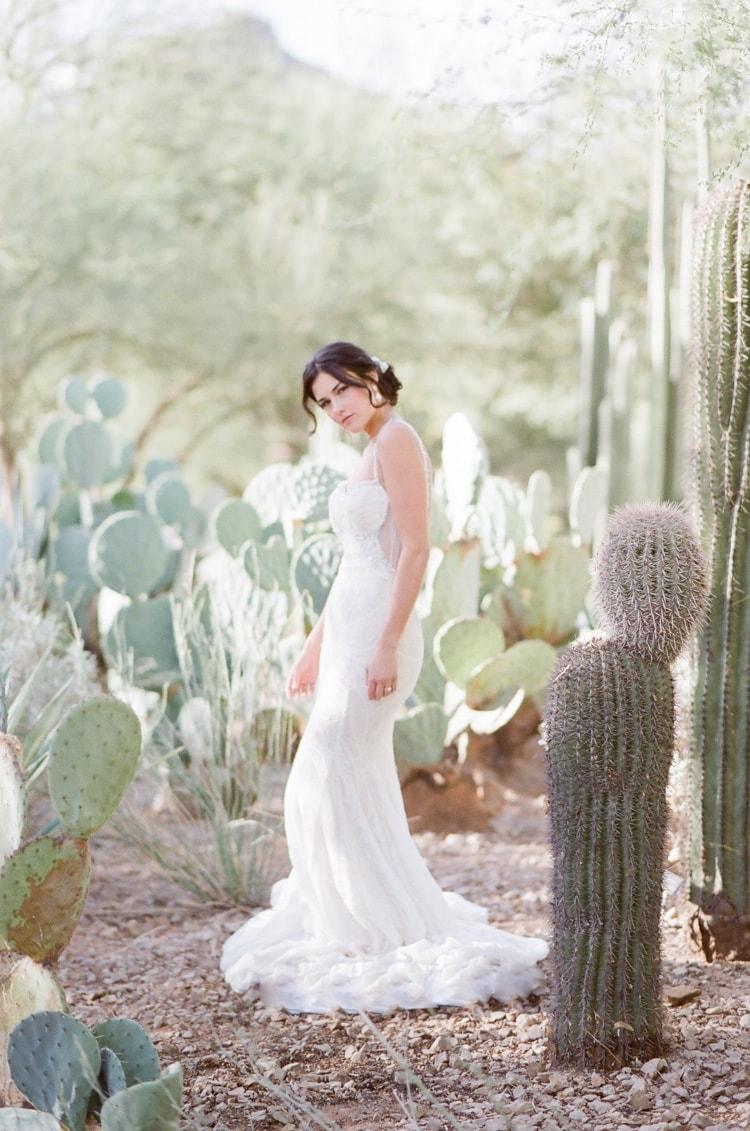 Bride posing with Arizona cacti