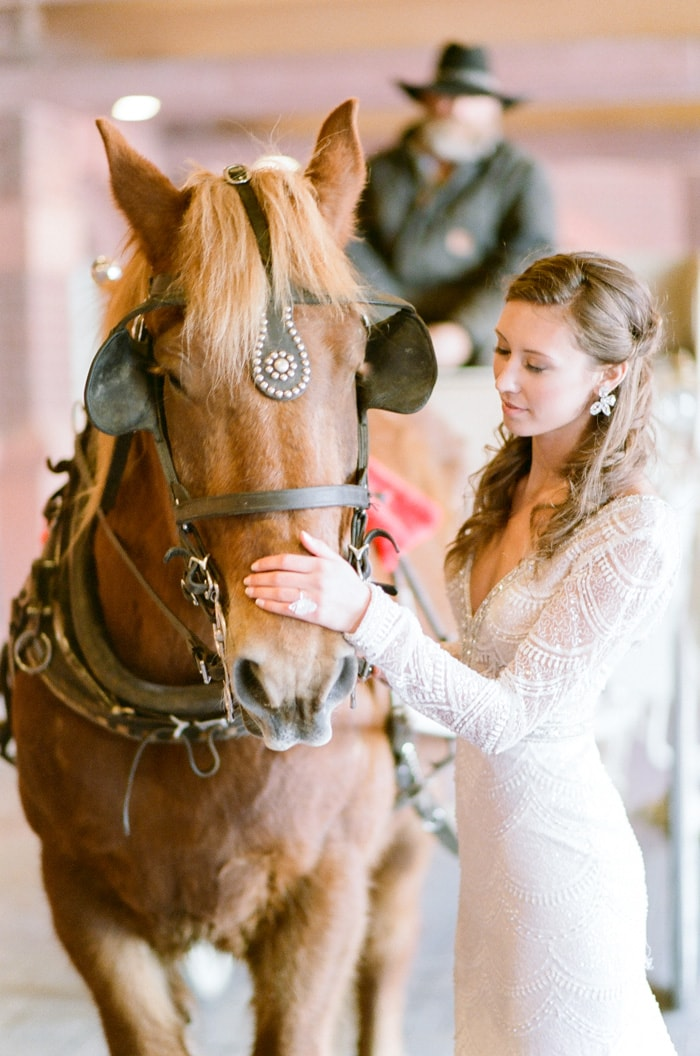 Bride gently petting the head of a horse that is pulling a carriage