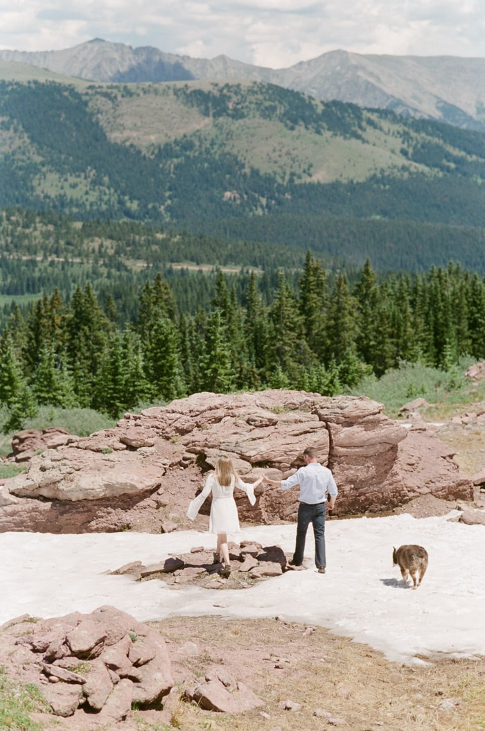Back of couple holding hands with dog besides them looking at distant mountains