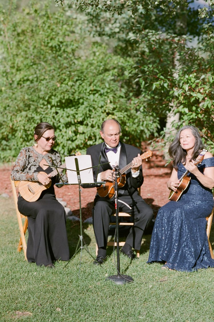 Band playing at wedding with ukulele
