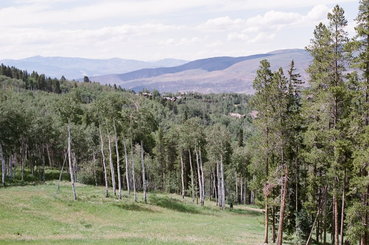 View of Colorado mountains and trees