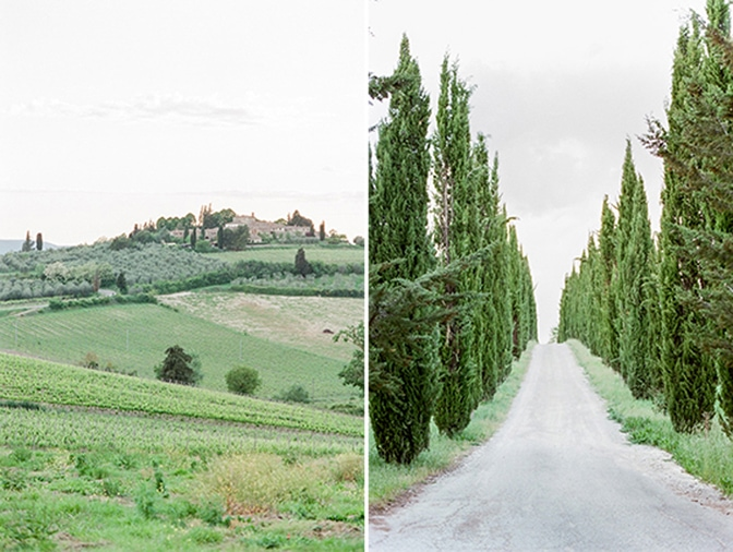 Alley of cypresses in Tuscany, Italy