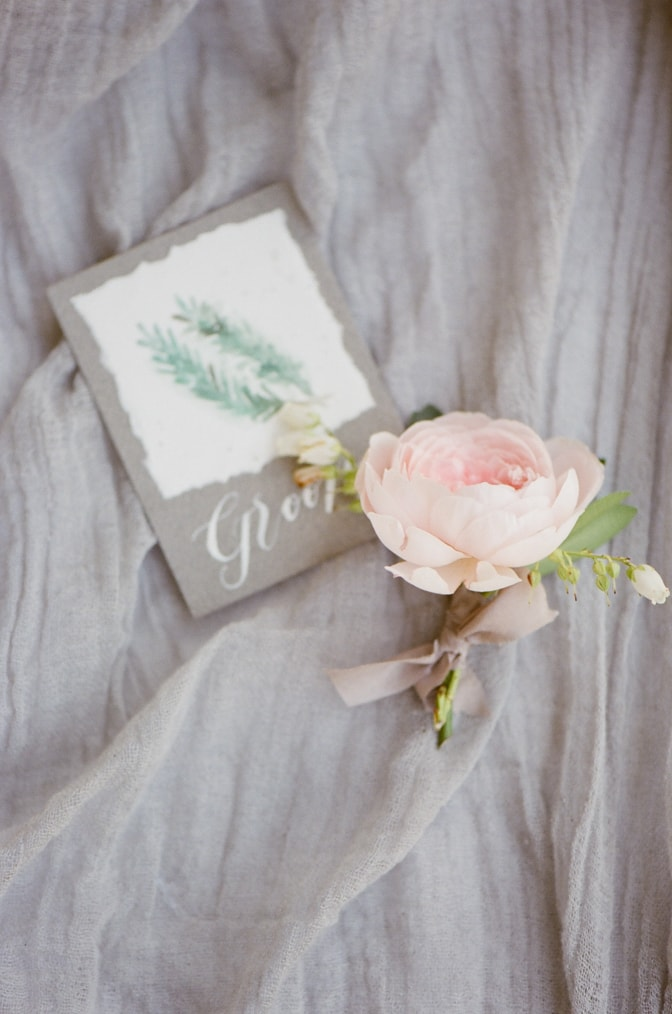 Closeup of a groom's boutonniere made out of a garden rose