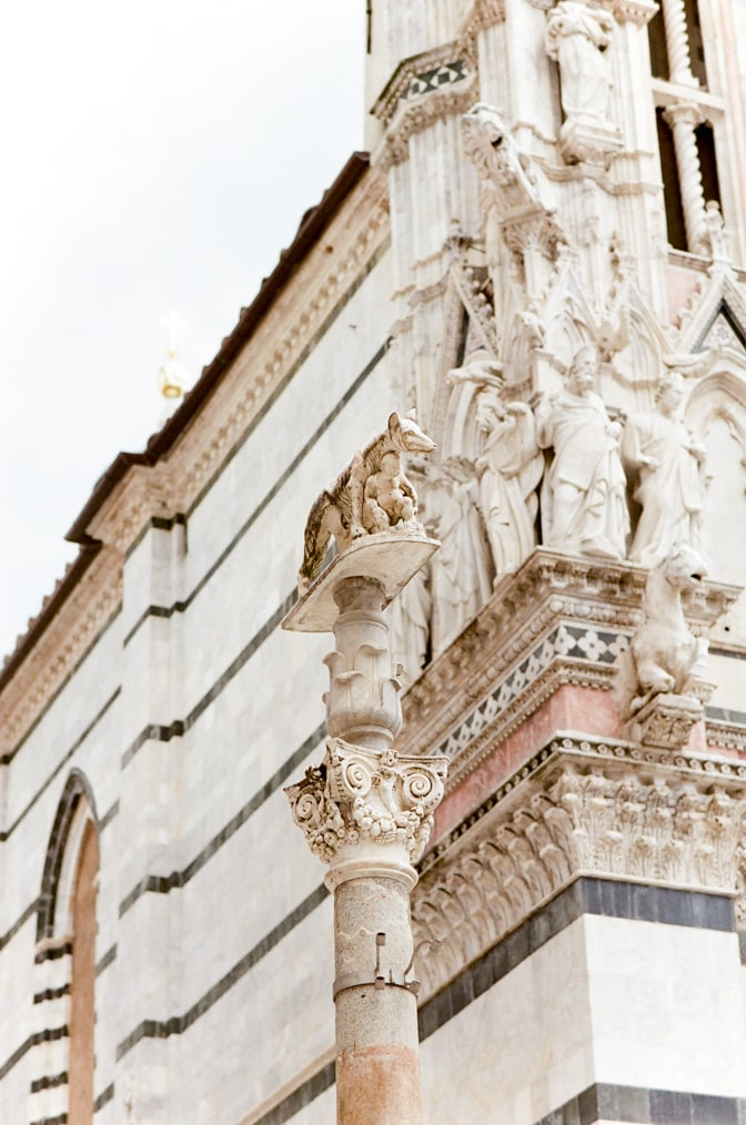 Search Results Web results Capitoline Wolf statue in Siena Italy