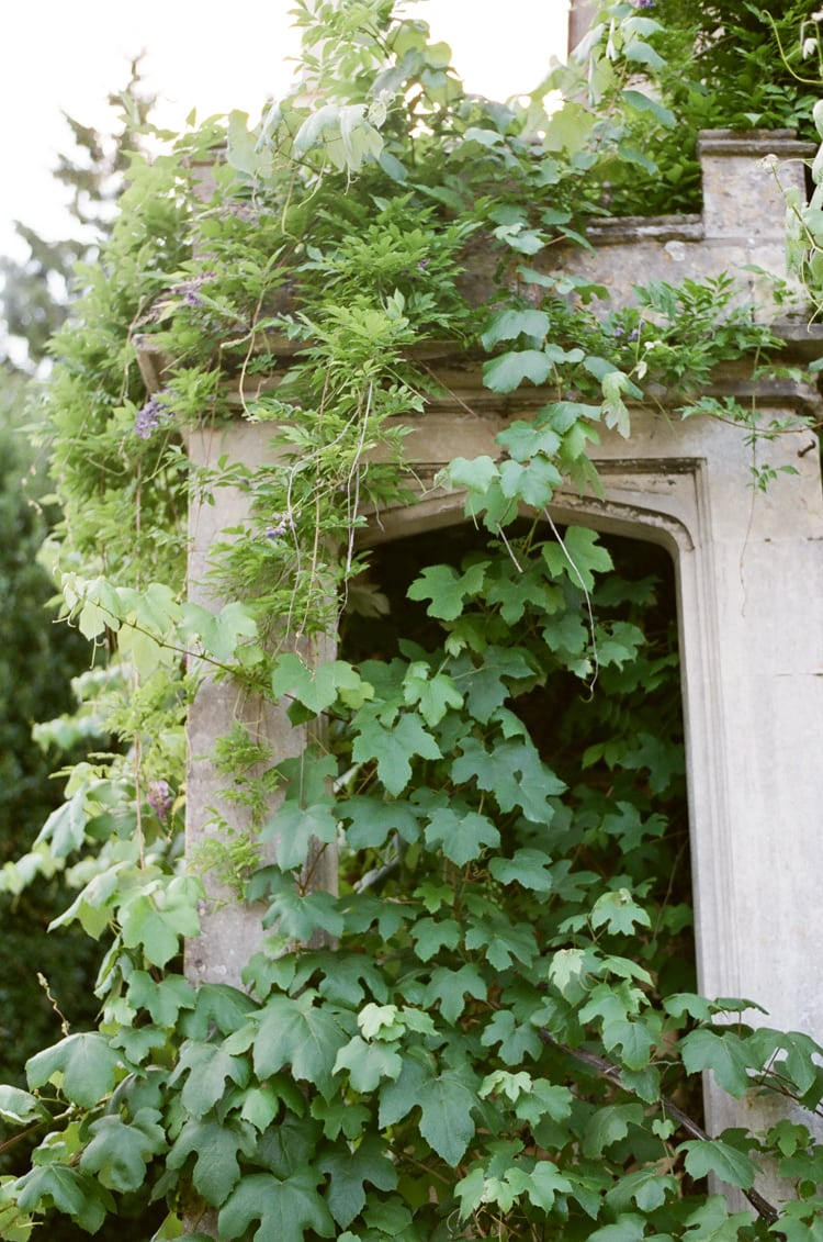 Closeup of leaves at the back door of the Barnsley House in the Cotswolds in England